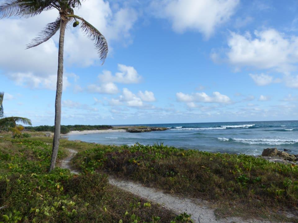 Beach less than a minutes walk