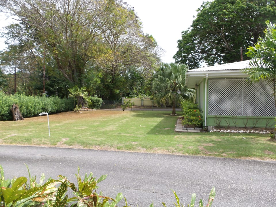 A section of the front garden