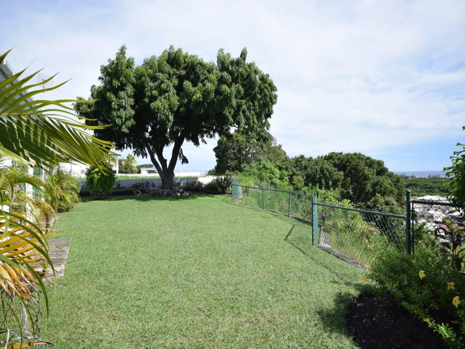 Lovely Lawn