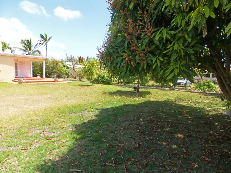 Partial View of the Front Lawn