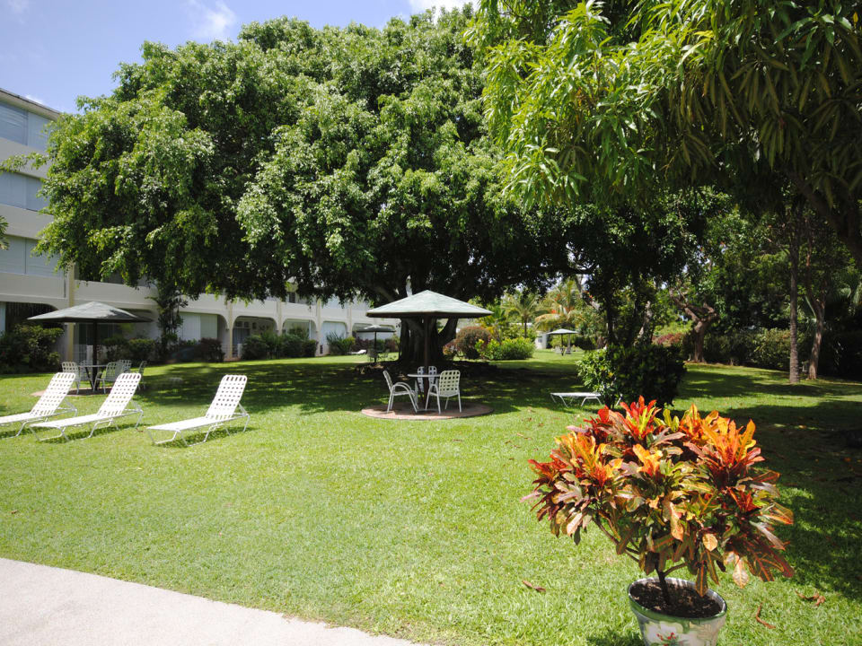 Extensive well landscaped gardens and grounds at Golden View