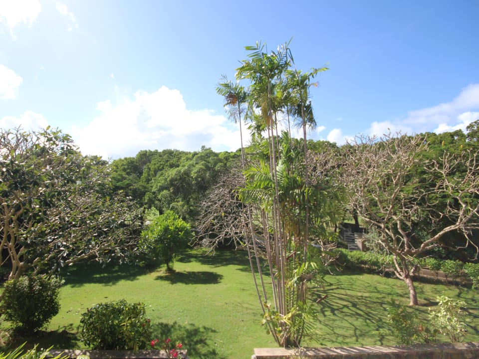 View of the grounds from the guest bedroom