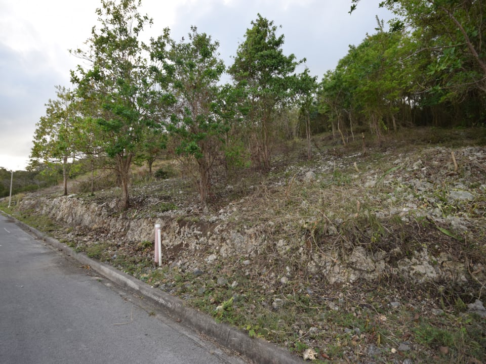 Tamarind Close Lot 29