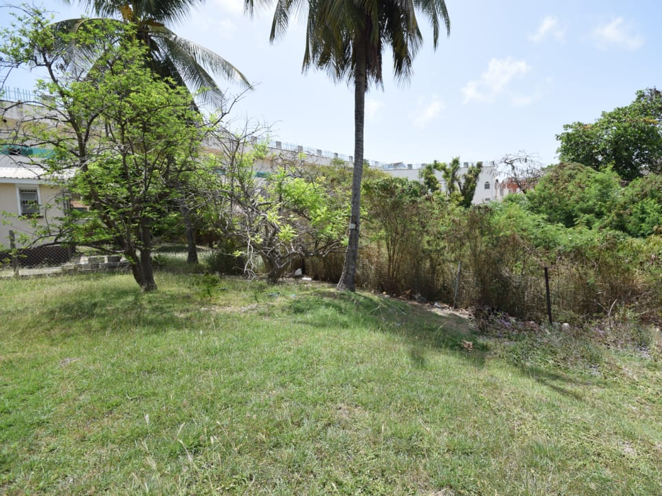 Grounds of Lot 4