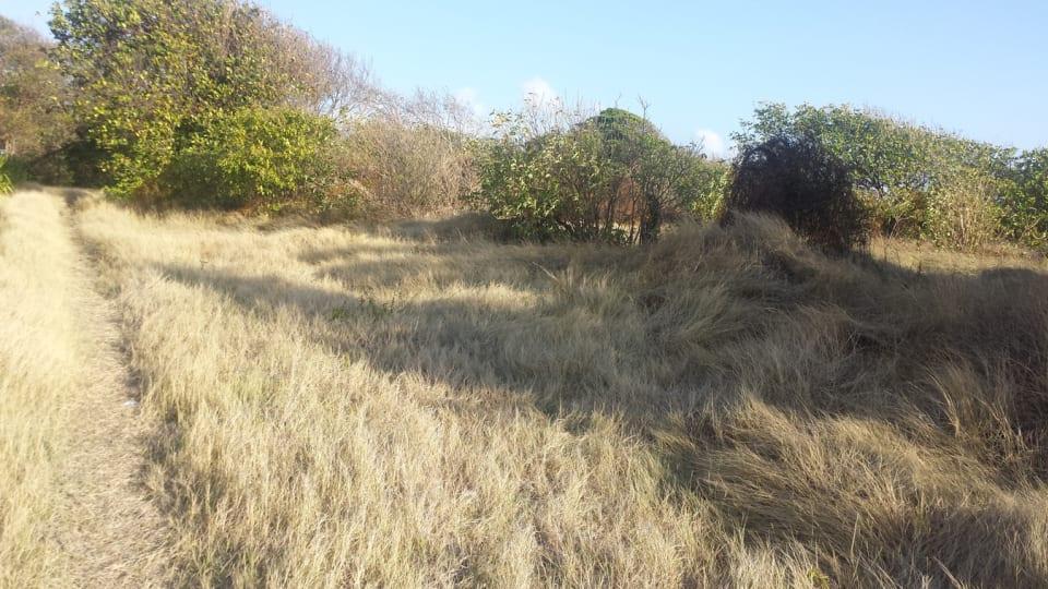 Flat Land
