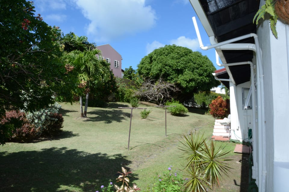 Backyard filled with plum, mango, cherry & lime trees