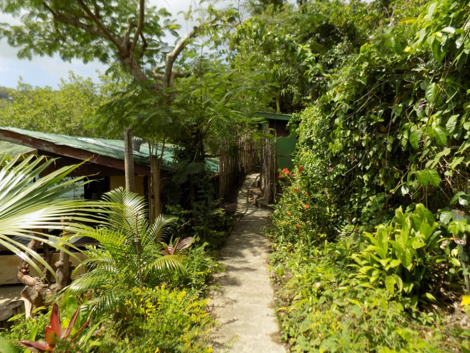 Path to Marigot Bay Beach