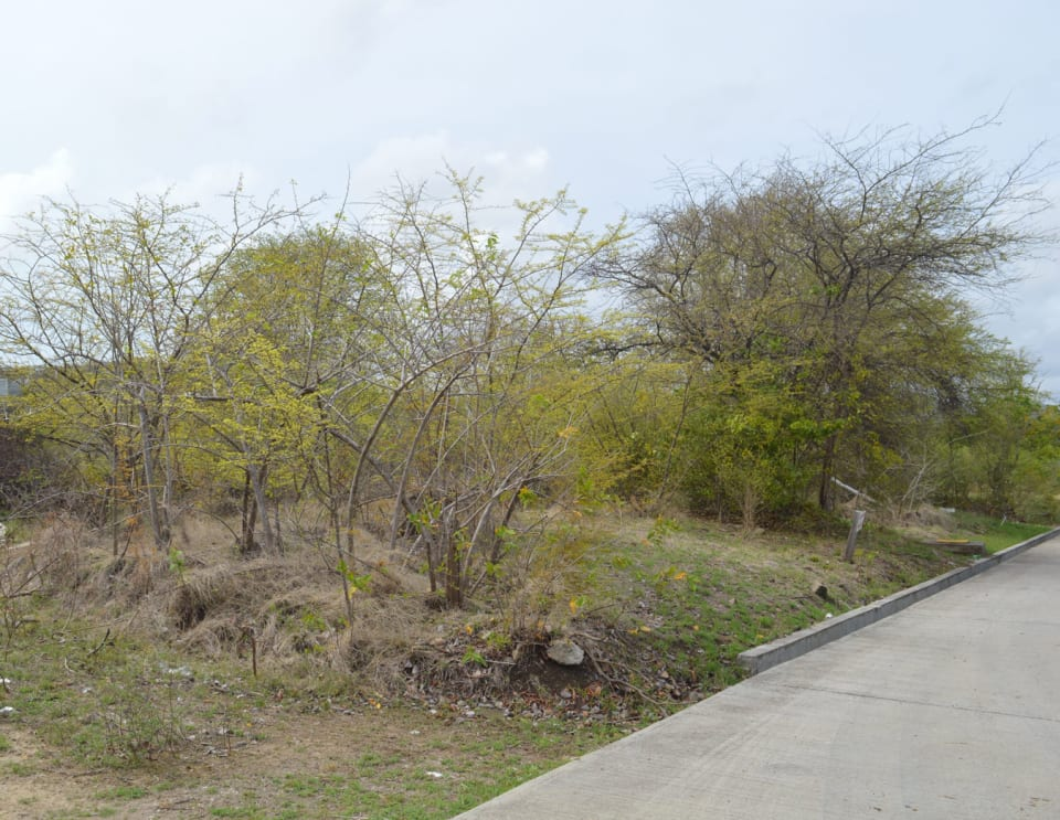 View of land facing South-East