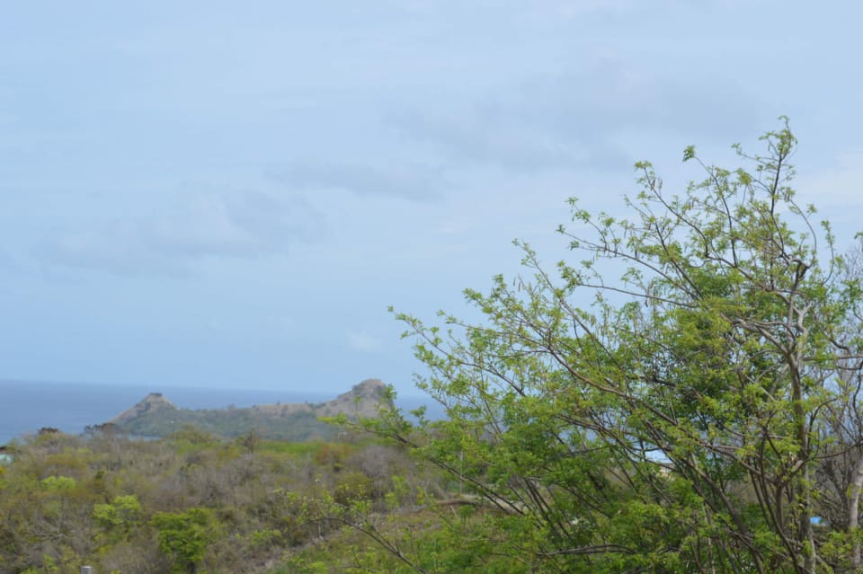 View of Pigeon Island from the land