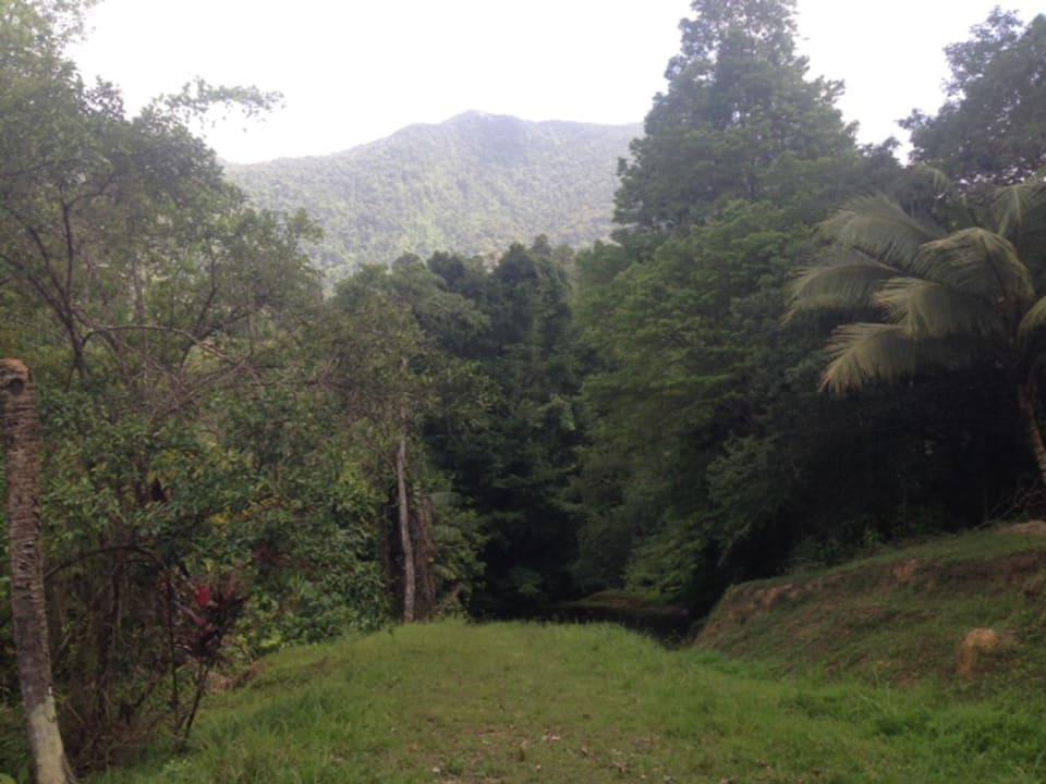 El Tucuche Views