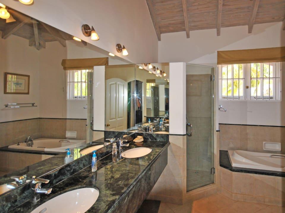 Luxurious Master Bathroom