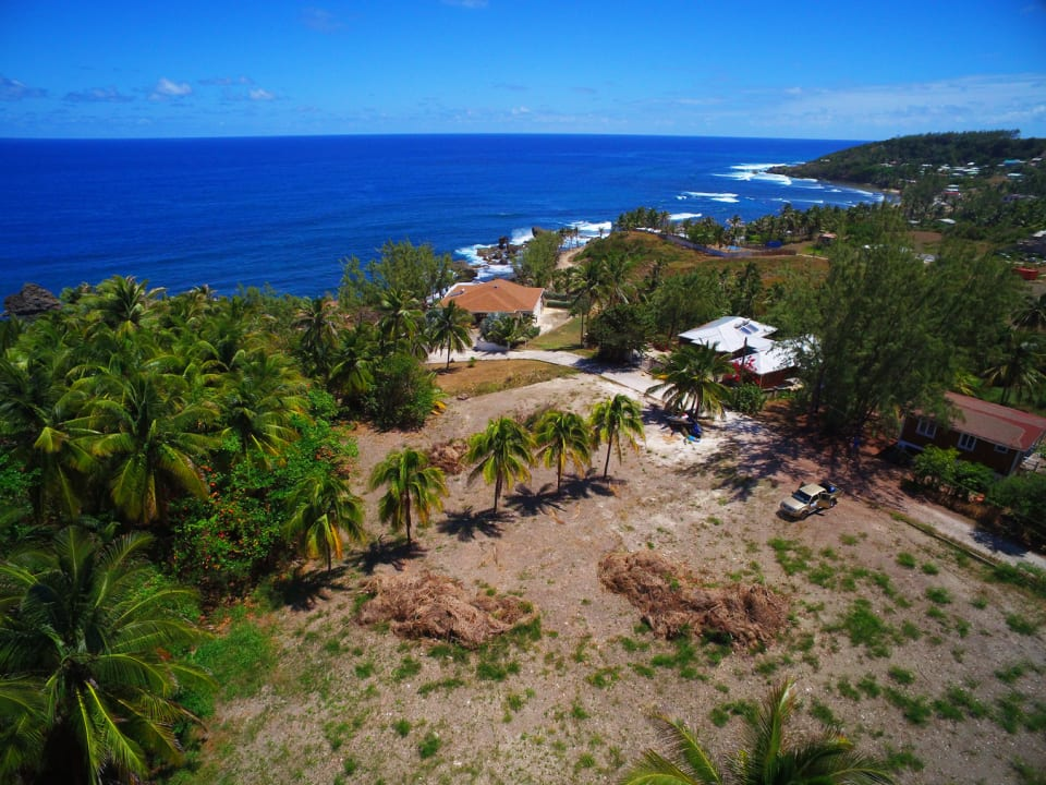 Aerial view of the lot in front of the palm trees