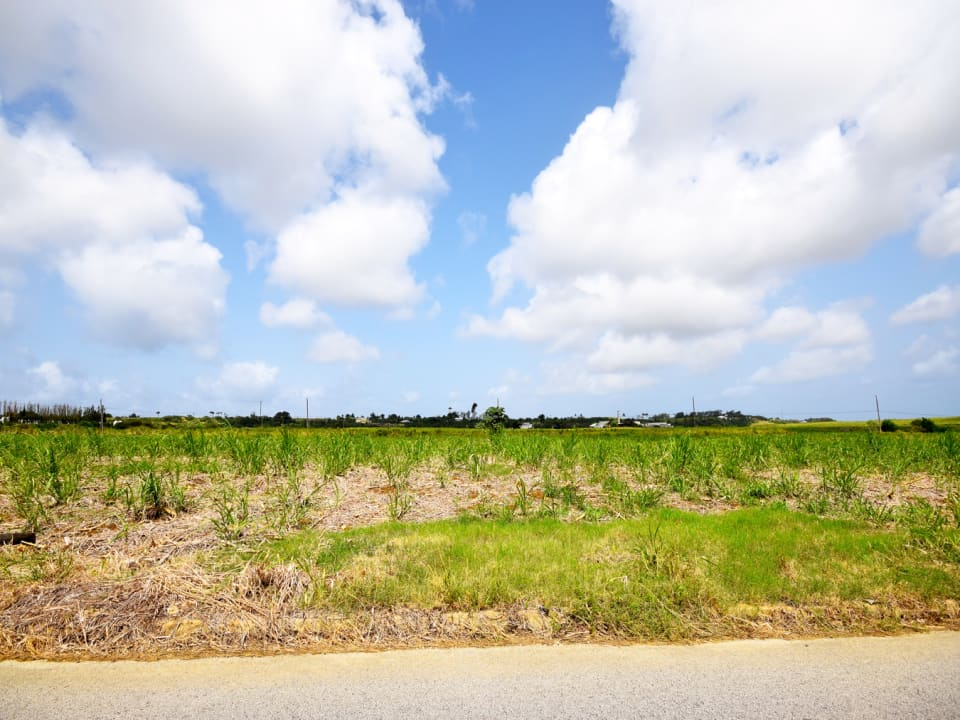180 Acres of land