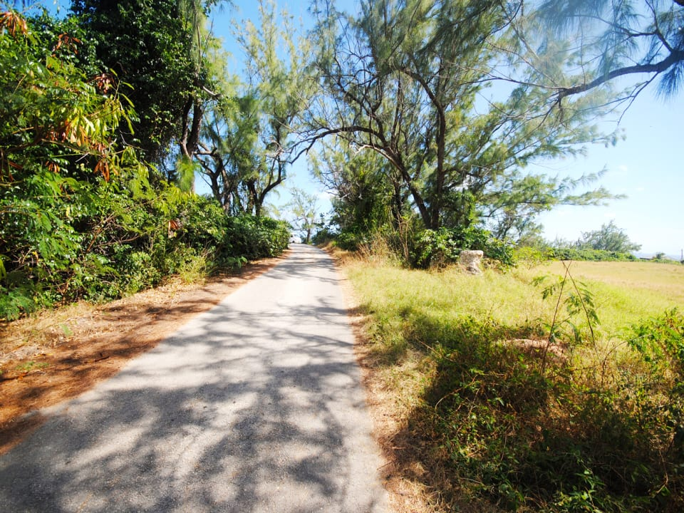 Access road to land lot