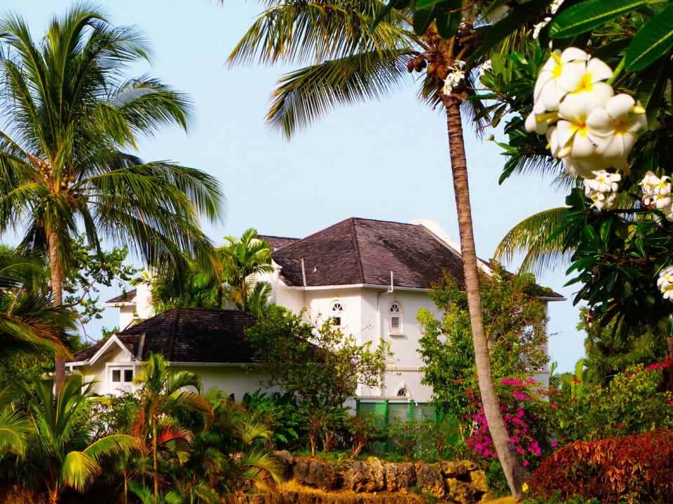 Coconut Ridge No 1