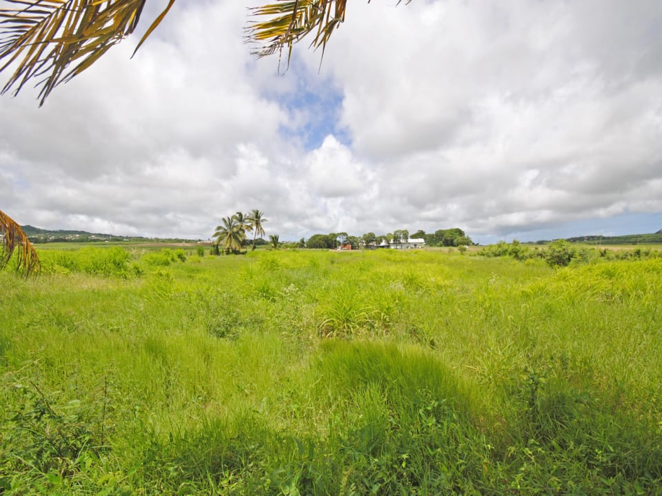 An acre of the 2 acre lot suitable for agriculture