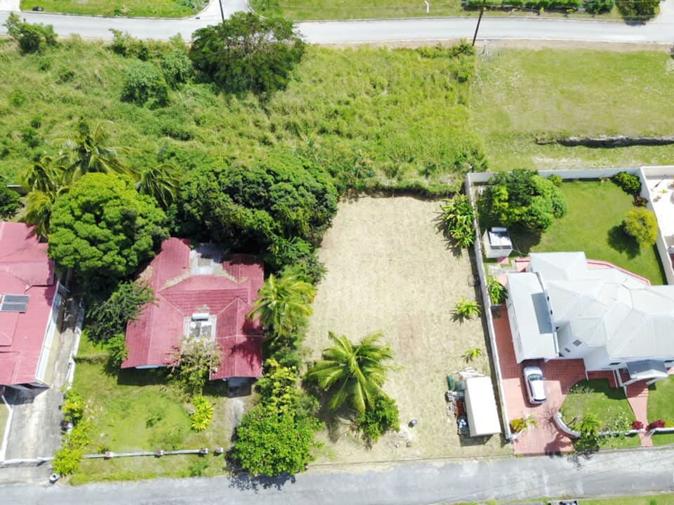 Aerial View of lot 51