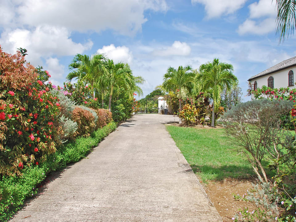 Driveway with entry view