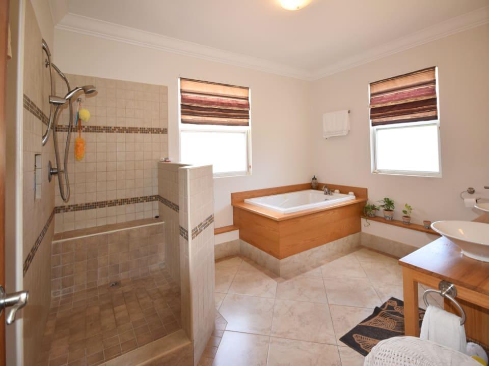 Master Bathroom - Shower and Tub
