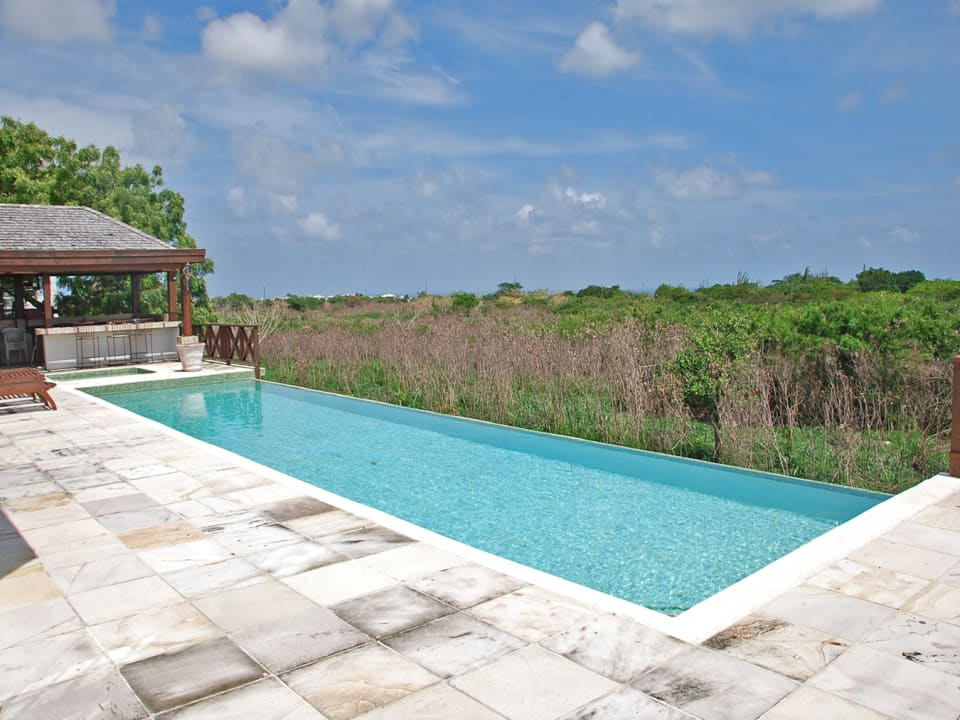 Large pool with wet bar