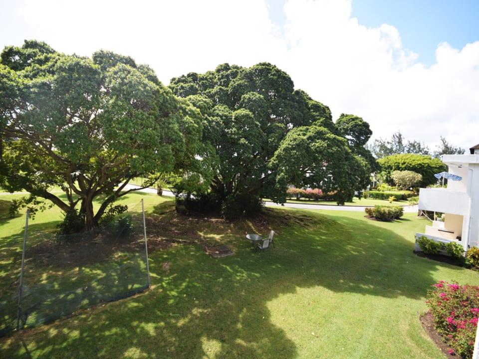 Views of gardens