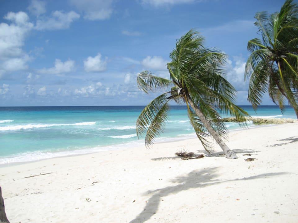 Beach just steps away