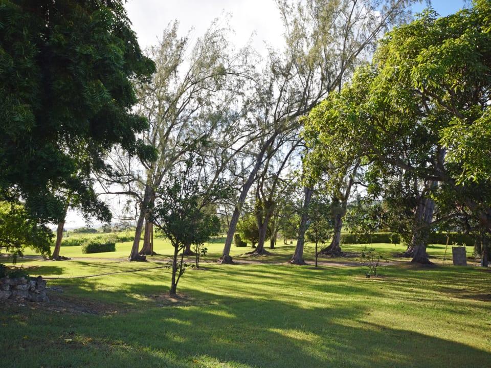 Spacious breezy gardens
