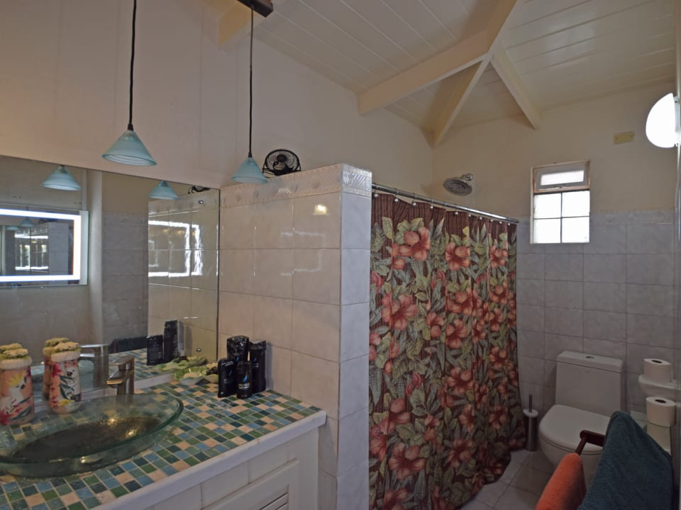 Shared upstairs bathroom