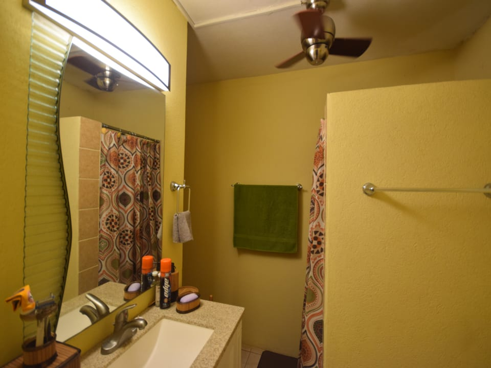 Ground floor shared bathroom