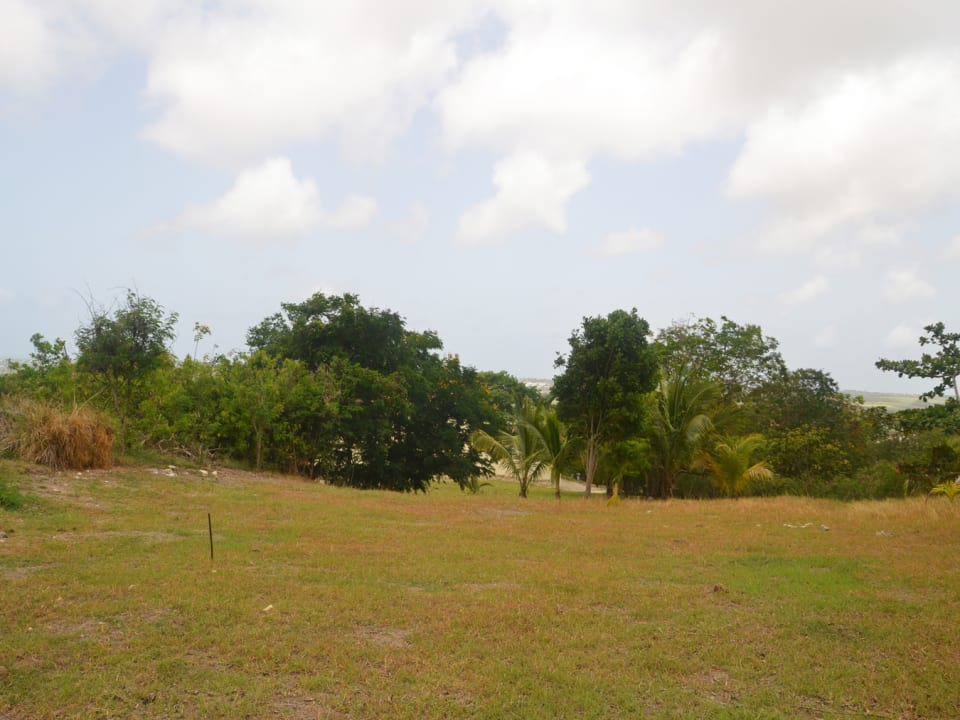 View of lot 62
