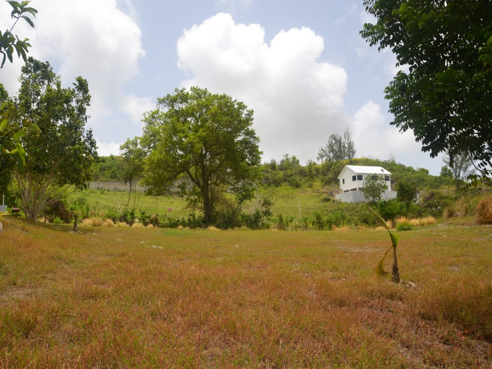 Westerly View of lot 62