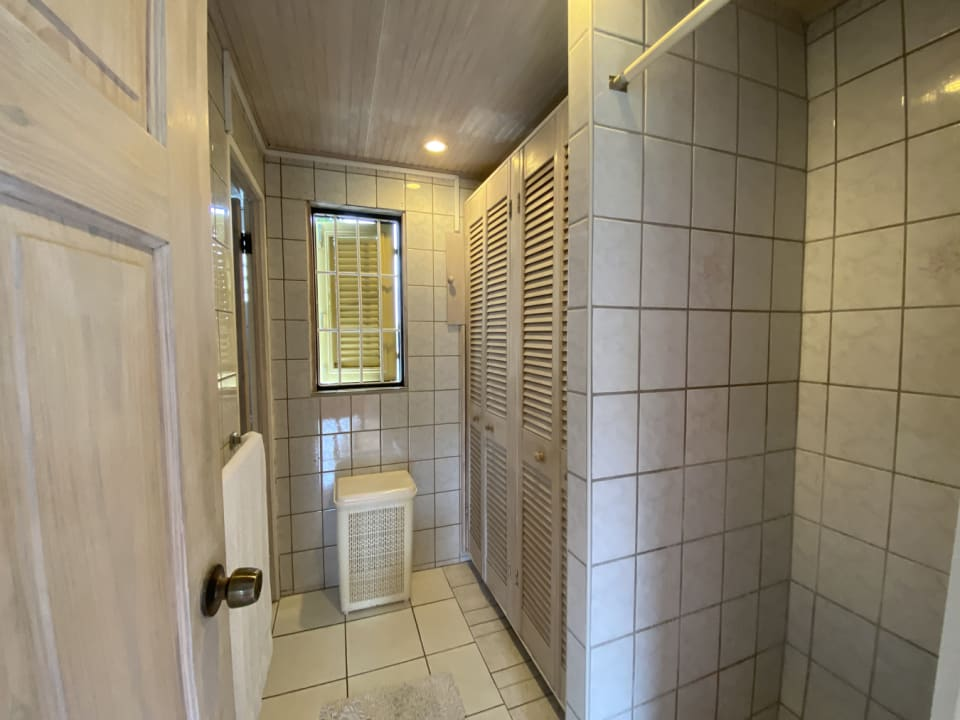 Walk in shower and storage
