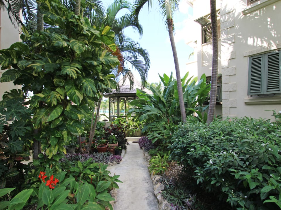 Pathway to the gazebo and beach access