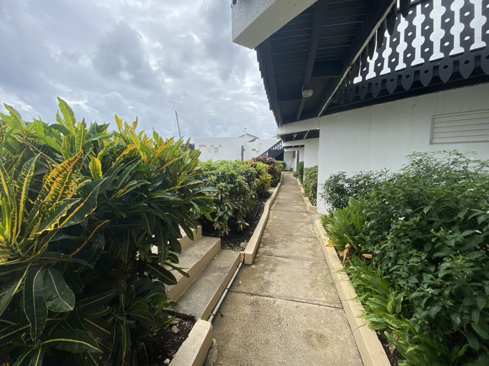 Pathway to apartments and shared laundry