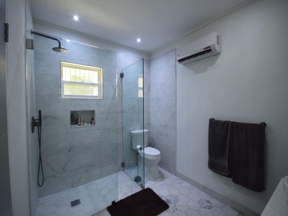 Master bathroom with AC