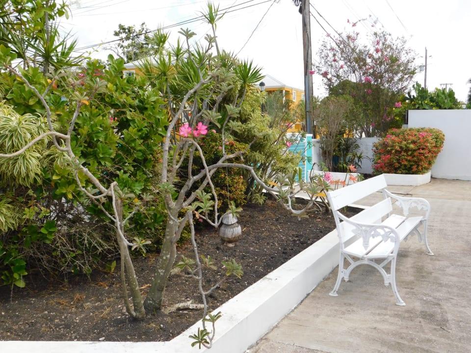 Front Garden Sitting Area