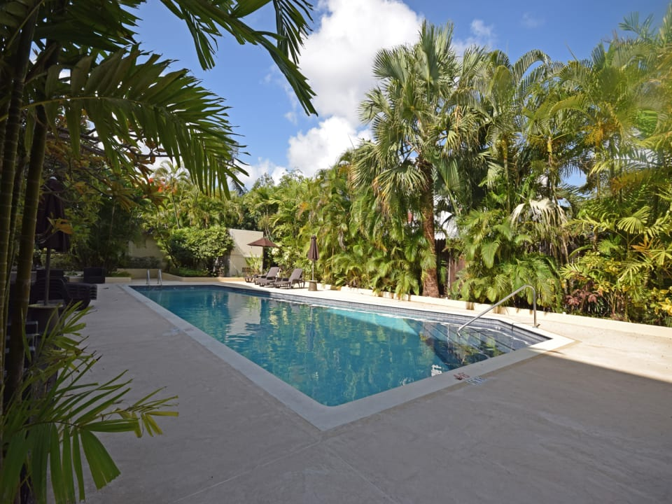 Pool and entertaining area