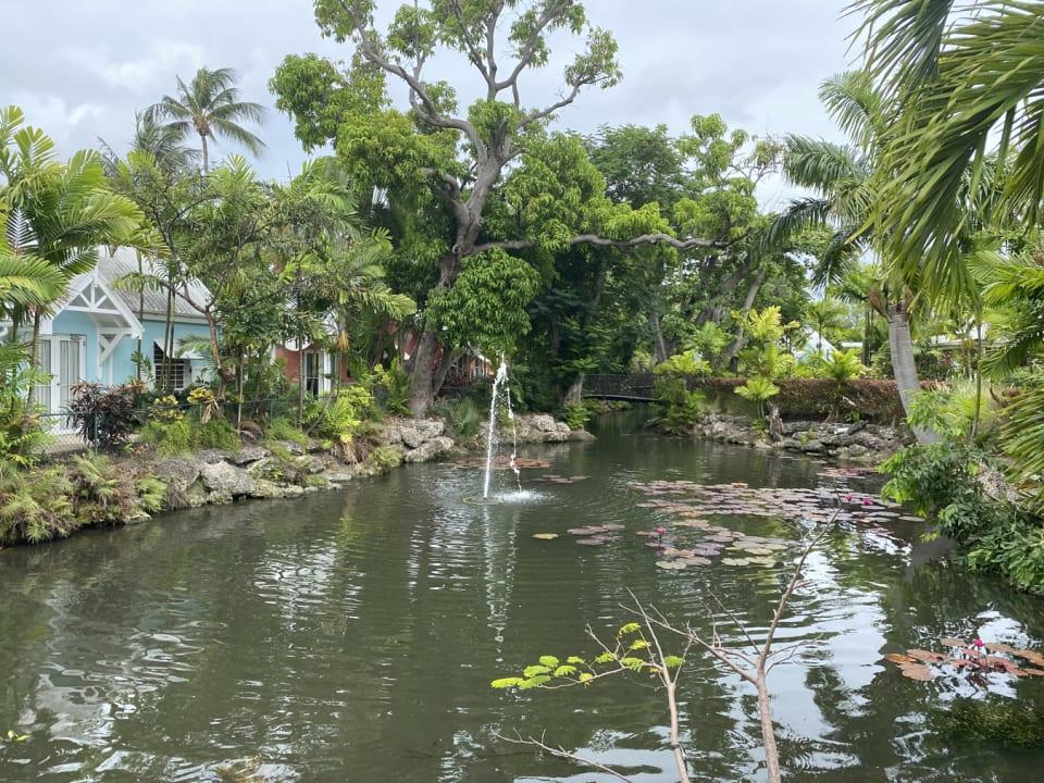 Picturesque gardens