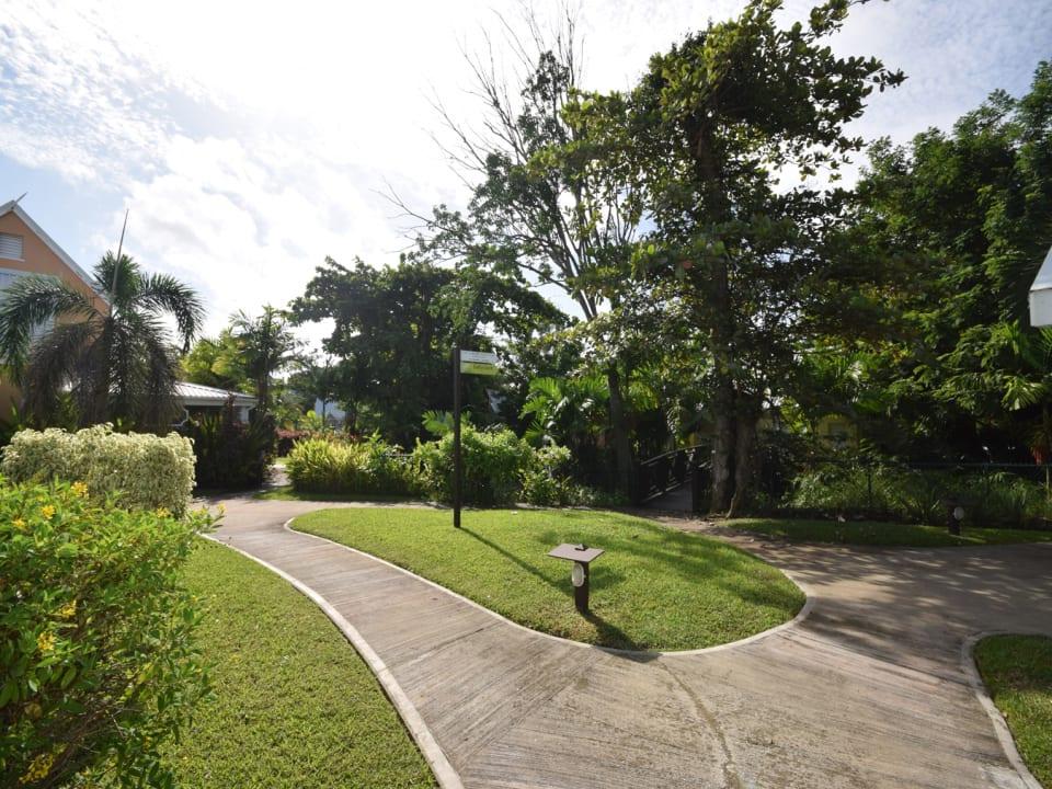 Gorgeous tropical gardens