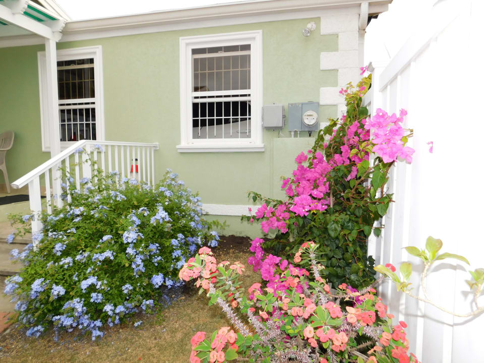 Front garden on entry to the home