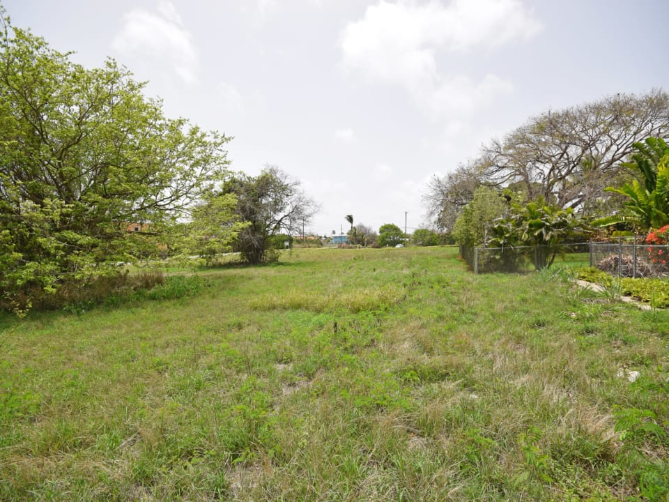 Land in Area