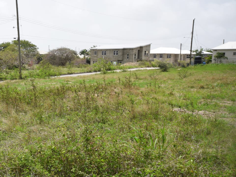 Looking from the Rear of the Lot