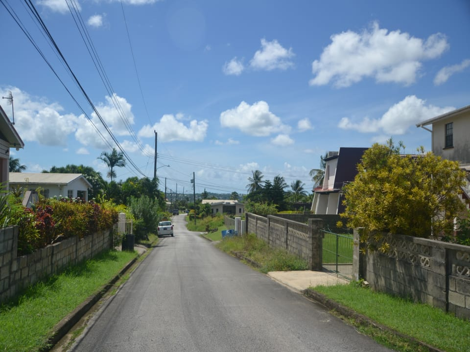 Street Scape