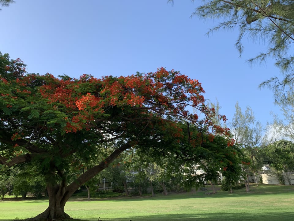 Beautiful grounds located across the golf course