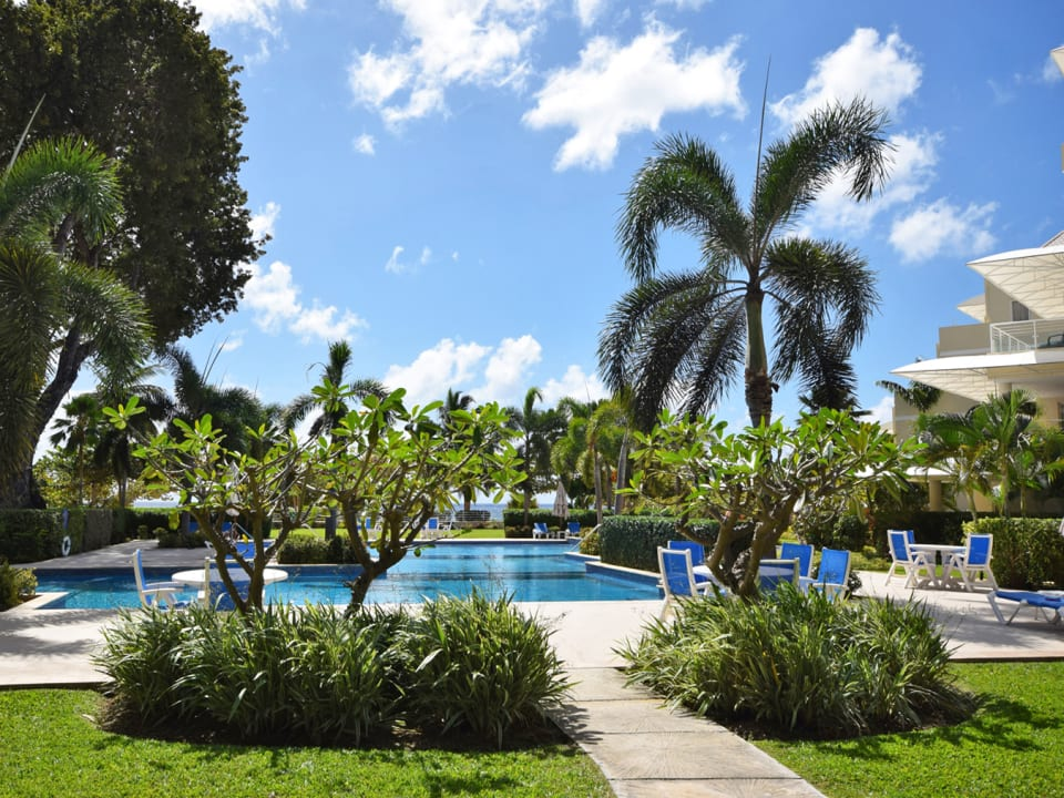 Large communal pool surrounded by tropical gardens