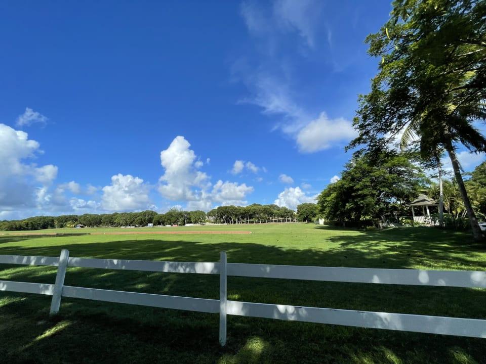Holders Polo Field