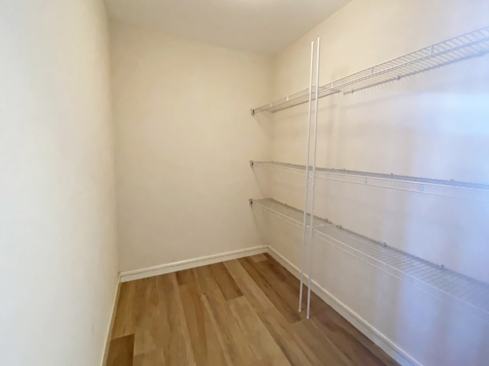 Walk in closet in the guest bedroom