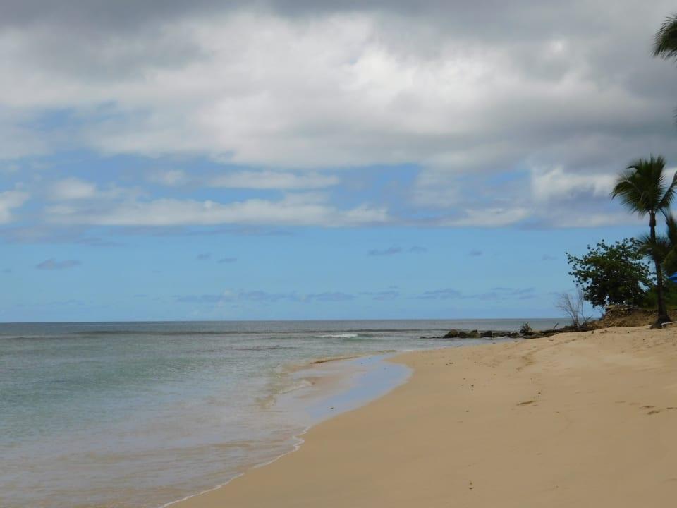 large beach and calm ocean