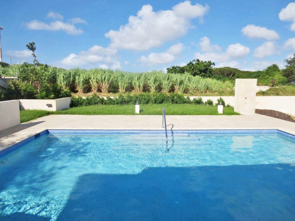 Large communal pool