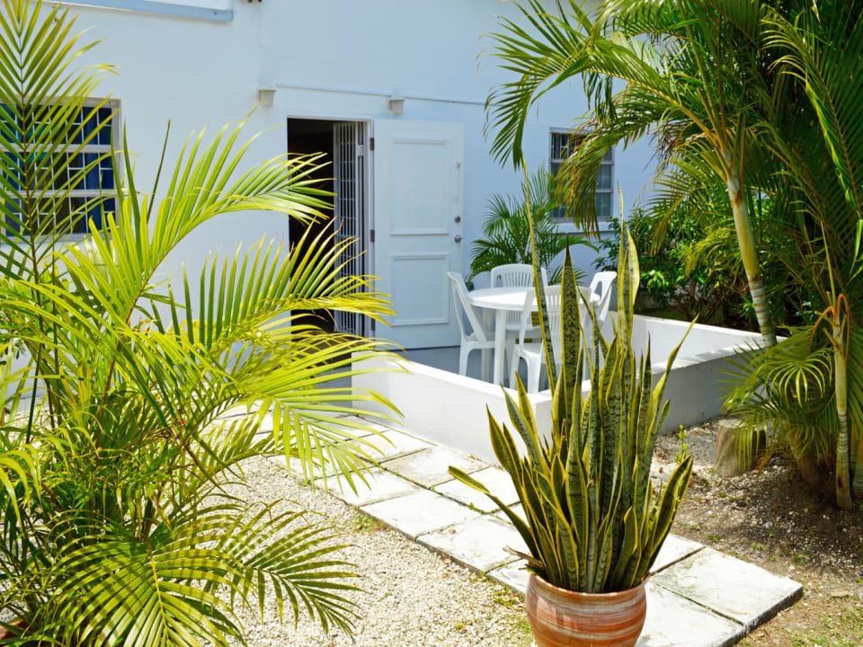 Ground Floor 3 Bedroom Apt - Terrace